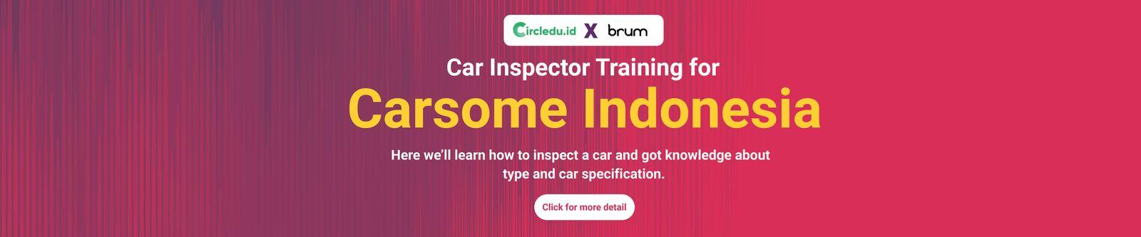 car-inspector